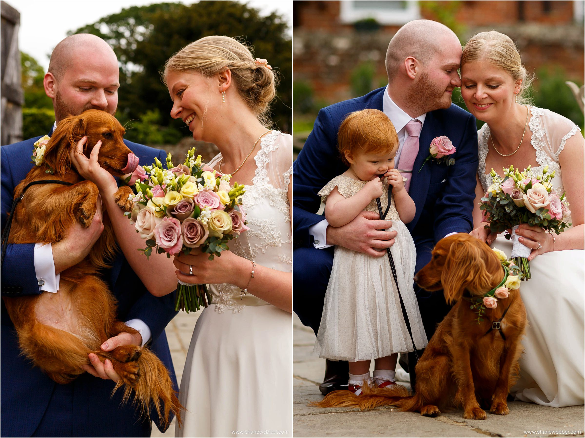 Mabel the dog ring bearer