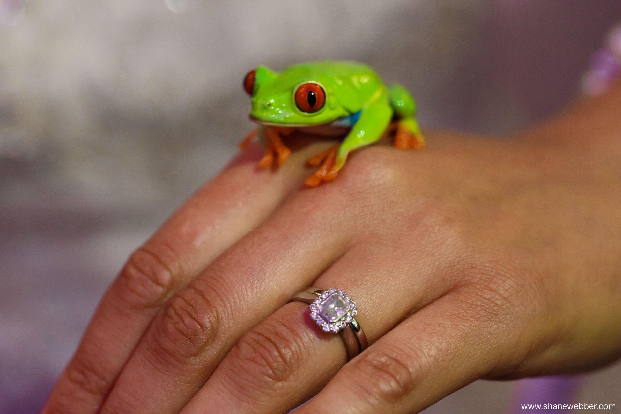 Fearless wedding photos