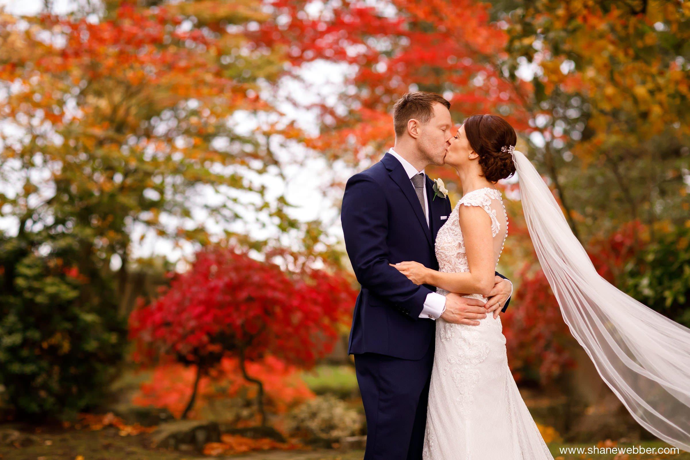 Colshaw Hall autumn wedding red leaf tree