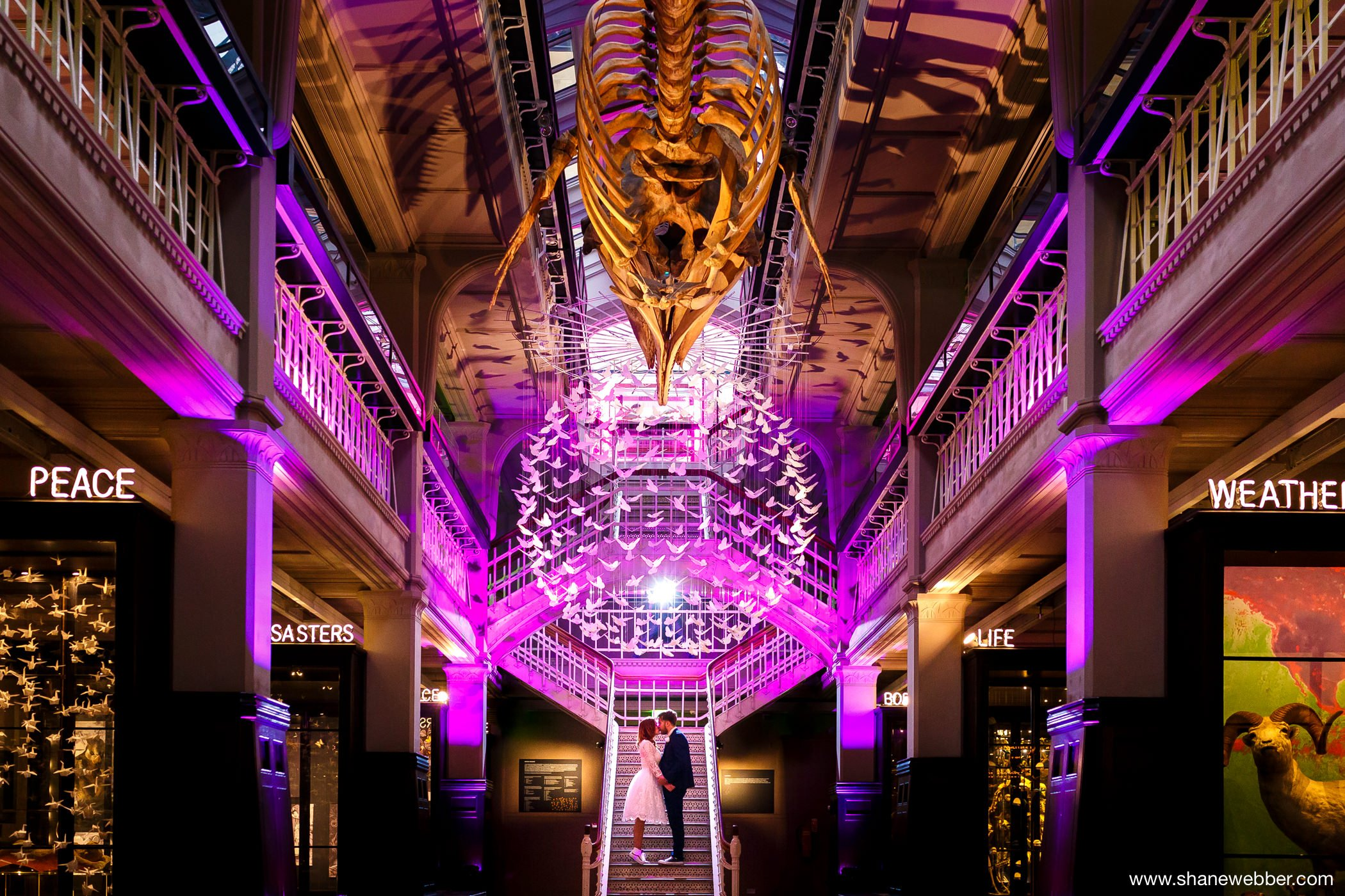 Manchester Museum Wedding Photos