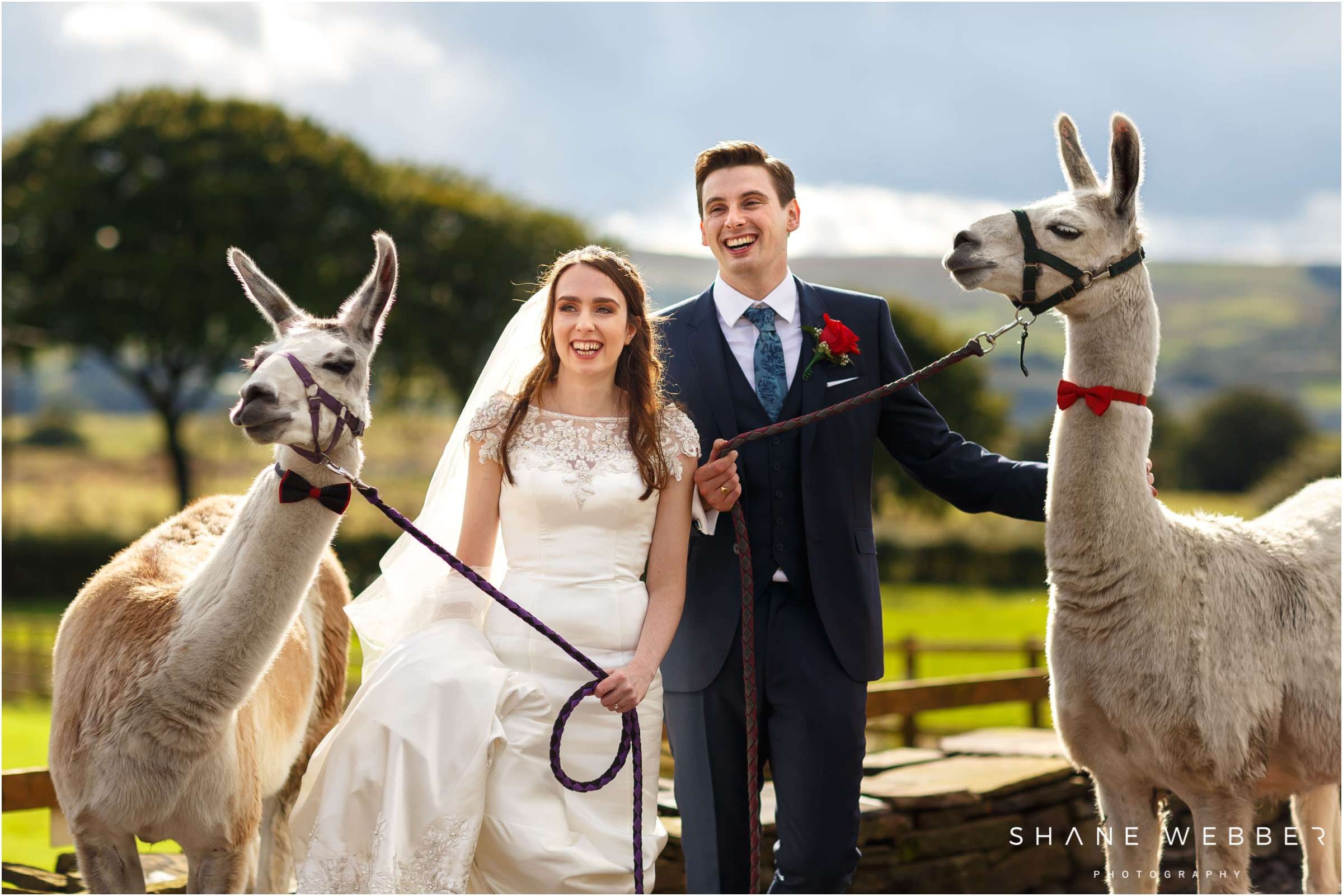wellbeing farm summer wedding photography