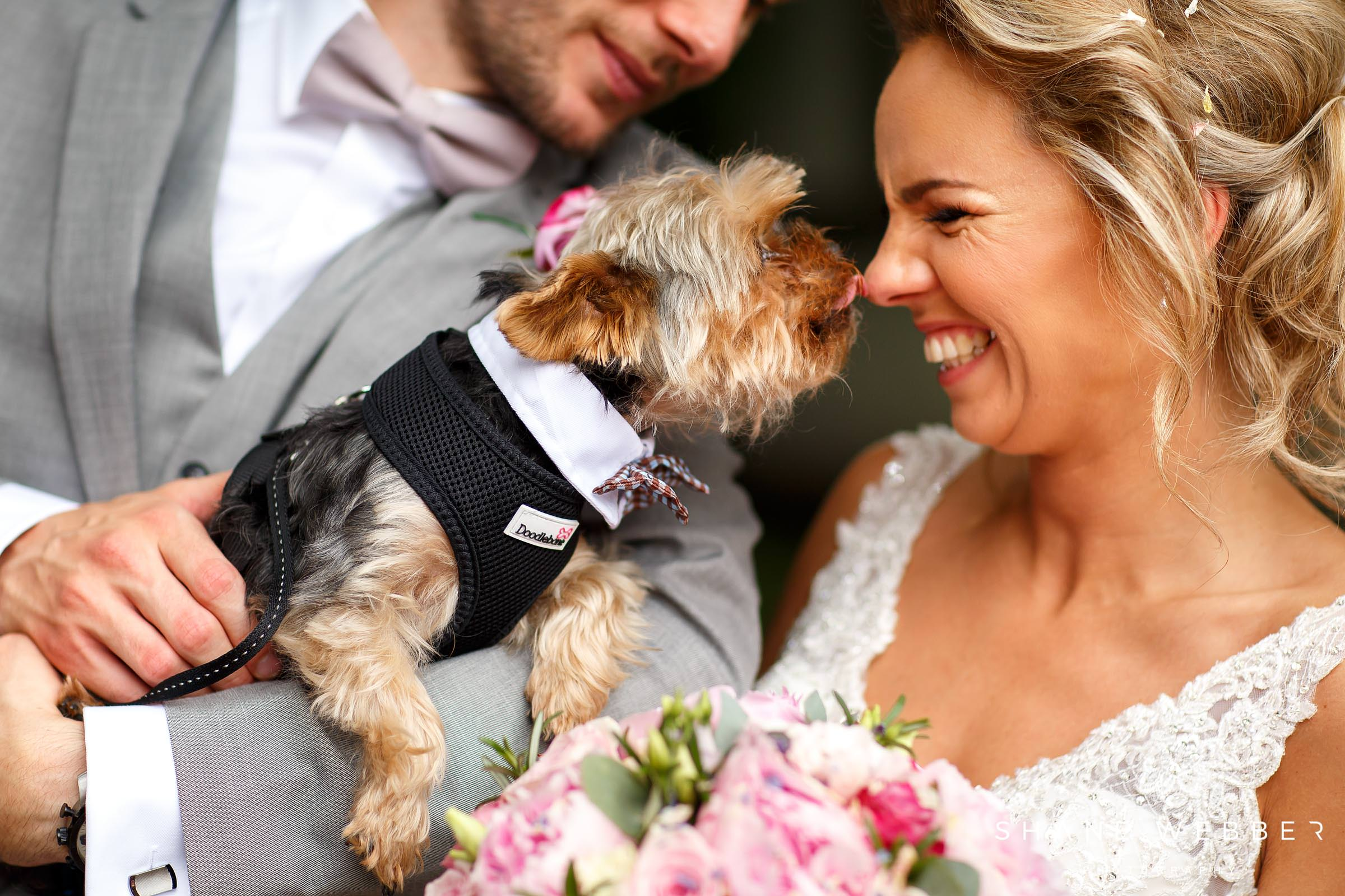 Ashfield house wedding photos with dog