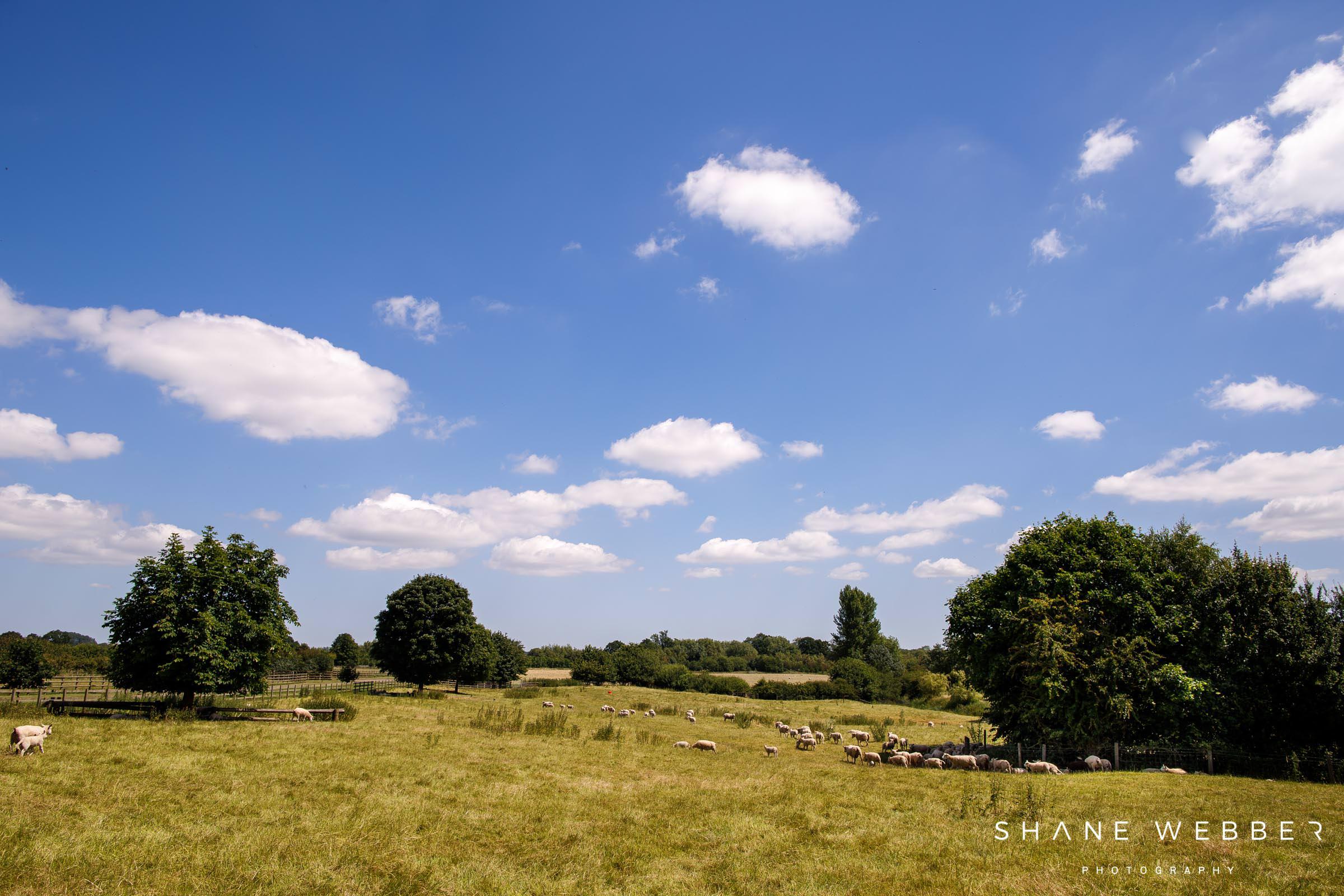 Mythe Barn gardens